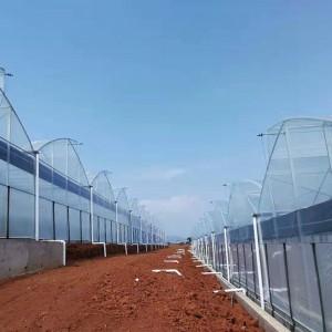 TTPO® Crystal Clear Long Lasting anti-driping Multi-span Greenhouse Plastic Film 6/8 mil