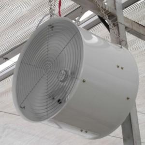 Cooling Rumah Kaca dan Sirkulasi Fan Ventilasi Produk ZLFJ460