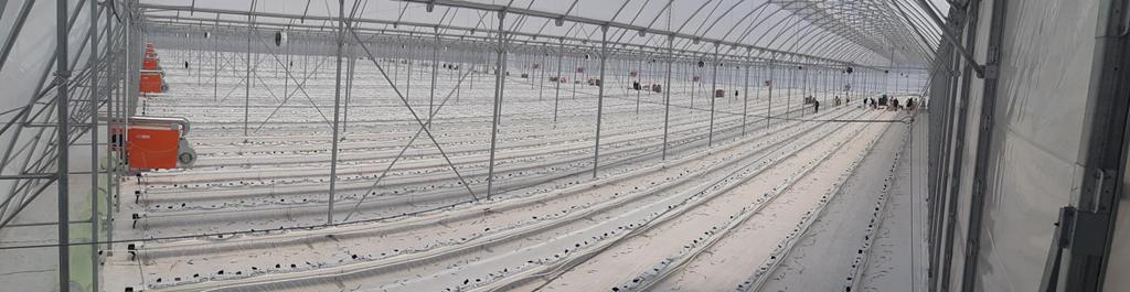 Greenhouse Circulation Fan 20200629修订